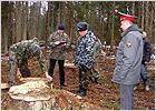 Полиция проверяет законность вырубки деревьев на партизанском мемориале