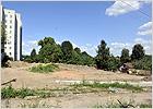 На месте спорной стройплощадки в Брянске ко Дню города будет разбит сквер