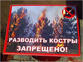 Со 2 августа в Брянской области вводится особый противопожарный режим