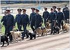 Брянская полиция перед 1 сентября проверит все школы с собаками