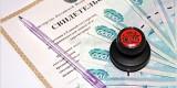 За год «налоговыми каникулами» воспользовались 15 предпринимателей Брянской области