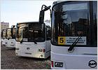 brn_buses