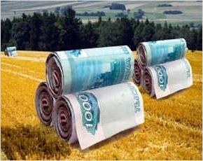 В Брянскую область поступило 2,5 млрд. рублей от Минсельхоза на поддержку сельхозпроизводителей