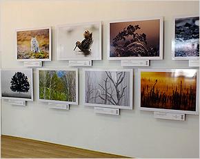 brn_exhibition