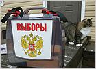 Явка на 15.00 на выборах в Брянской области составила 20%, в Брянске — около 9%