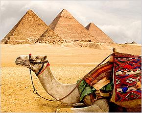 Египет планирует отменить визы для российских туристов
