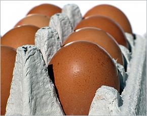Брянскстат: лидером подешевения в регионе на прошлой неделе стали яйца