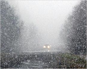 Прогноз погоды на 12 декабря: ветер юго-западный, на дорогах гололедица