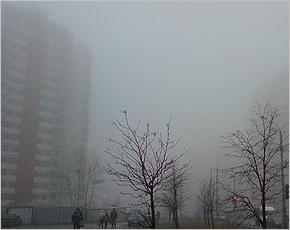 Прогноз погоды на 19 апреля: дожди и туман при северо-западном ветре, до +15