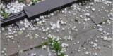 Прогноз погоды на 28 июля: дожди при юго-восточном ветре, местами грозы и град