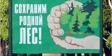 В Брянске обнаружилось дополнительно 170 гектаров городских лесов