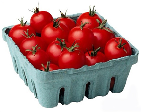 За неделю в Брянской области почти на четверть подешевели помидоры