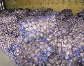 Брянская область получит почти 275 млн. рублей сельскохозяйственных субсидий