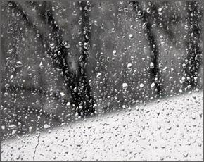 Прогноз погоды на 1 марта: мокрый снег и морось, ветер южный, днём до +10°С