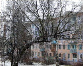 Прогноз погоды на 16 февраля: без осадков, ветер северный, днём до минус 7°С