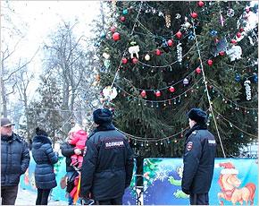Новогодние праздники прошли под полным контролем полиции