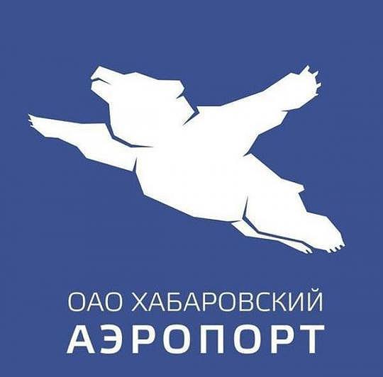 flight_bear