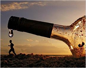 Минкомсвязи поддержало идею Минсельхоза рекламировать вино по ТВ