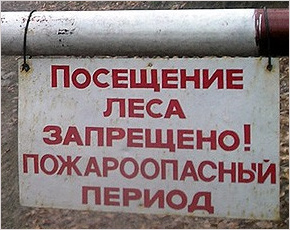 В Новозыбковском районе введён особый противопожарный режим