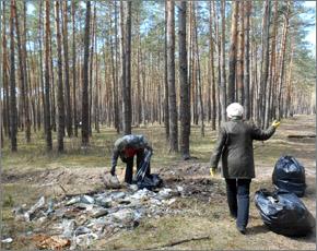 В лесополосе Уральского микрорайона собрано 150 мешков мусора