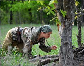 За лисятами «Брянского леса» будут наблюдать московские зоологи