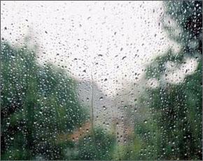 Прогноз погоды на 20 мая: небольшие дожди, ветер северо-восточный, до 23 тепла