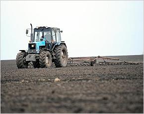 Брянский «Россельхозбанк» выделил более 900 млн. рублей на реализацию программы импортозамещения