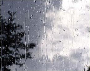 Прогноз погоды на 7 сентября: дожди при юго-западном ветре, местами туман, до +19