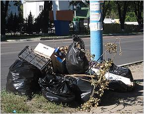 Жители Брянска взялись за ликвидацию несанкционированных свалок
