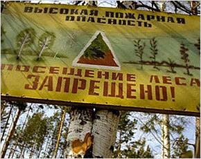 В двенадцати районах Брянской области введён особый противопожарный режим
