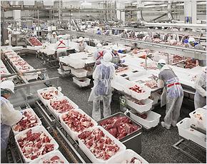«Мираторг» увеличил суточную мощность производства брянской говядины на 20%