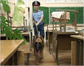 Перед 1 сентября брянские школы полиция проверит с собаками