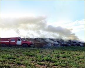 МЧС сообщает: за день в регионе сгорело 19 тонн сена