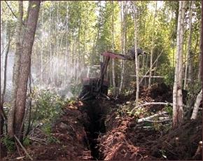 Ситуация под контролем: в Трубчевском районе торфяники горели на 2 гектарах