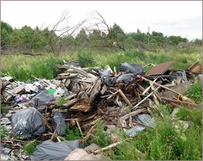 Россельхознадзор добился ликвидации свалки на сельхозземлях в Суземском районе