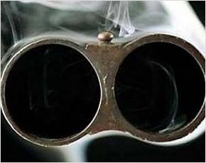 В Севском районе отец случайно застрелил четырёхлетнюю дочь