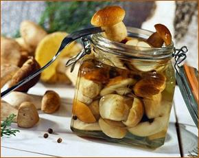 «Скорая»: в Брянске — 13-е отравление грибами за осень