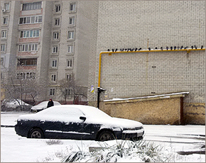 Прогноз погоды на 12 января: снег при юго-восточном ветре, днём вообще до 0°