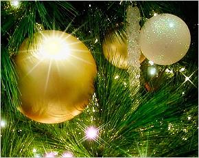 Руководители Брянска поздравили земляков с Новым годом и грядущим Рождеством