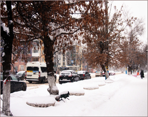 Прогноз погоды на 28 февраля: мокрый снег и морось ночью, днём без осадков, до +8