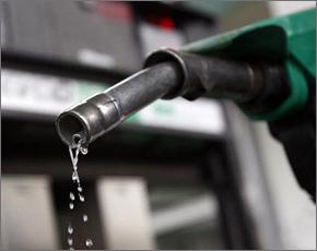 Бензин в Брянске подорожал на 10 копеек за неделю — Росстат