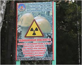 Брянский губернатор намерен за пять лет вернуть в оборот 360 тыс. га «чернобыльской» земли