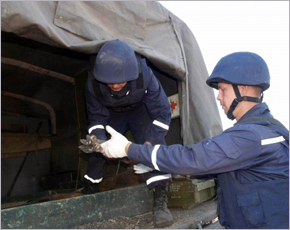 Днём во вторник в регионе обезврежено полтора десятка боеприпасов — МЧС