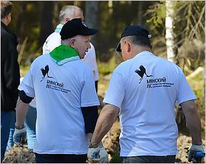 «Брянский лес» приглашает волонтёров тропить новую экотропу