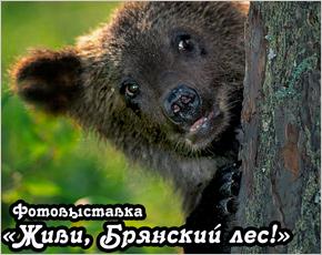 Рекламная кампания нацпарка «Придеснянский» продолжается фотовыставкой