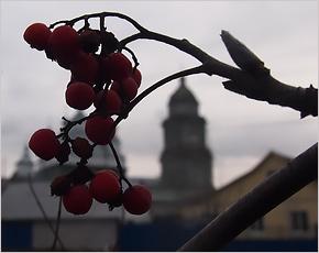 Новозыбков: единый град трёх Церквей Христовых