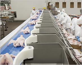 «Мираторг» впервые поставил брянскую курятину в Сербию