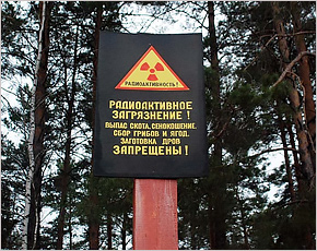 Брянская область очистится от последствий аварии на ЧАЭС почти через два столетия