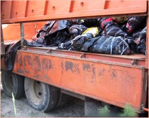 В Трубчевском районе «перехвачено» два грузовика с неопознанным мясом