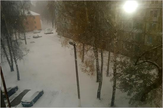 snow_seshcha
